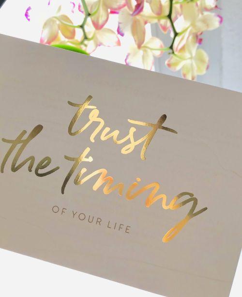 Christine Rudolph Workflow - Trust